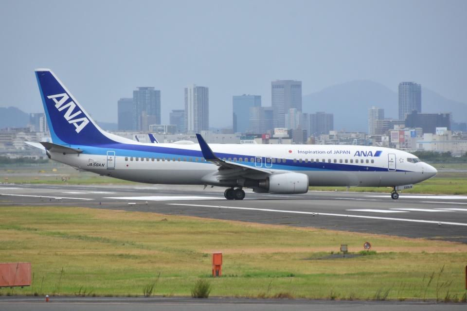 Izumixさんの全日空 Boeing 737-800 (JA56AN) 航空フォト