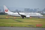 Izumixさんが、伊丹空港で撮影した日本航空 737-846の航空フォト(写真)