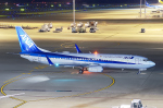 ういるばさんが、中部国際空港で撮影した全日空 737-881の航空フォト(写真)