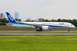 まくろすさんが、伊丹空港で撮影した全日空 787-9の航空フォト(飛行機 写真・画像)