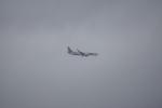 神宮寺ももさんが、関西国際空港で撮影したティーウェイ航空 737-8KGの航空フォト(写真)