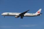 BOEING737MAX-8さんが、羽田空港で撮影した日本航空 777-346/ERの航空フォト(写真)