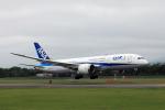 syo12さんが、函館空港で撮影した全日空 787-8 Dreamlinerの航空フォト(写真)
