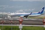 tomokichiさんが、伊丹空港で撮影した全日空 737-881の航空フォト(写真)
