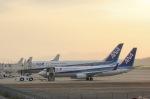 だいまる。さんが、岡山空港で撮影した全日空 737-881の航空フォト(写真)