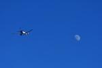 beimax55さんが、成田国際空港で撮影したフェデックス・エクスプレス 777-FS2の航空フォト(写真)