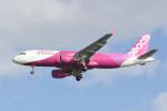 kuro2059さんが、那覇空港で撮影したピーチ A320-214の航空フォト(写真)