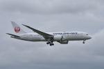 ワイエスさんが、成田国際空港で撮影した日本航空 787-8 Dreamlinerの航空フォト(写真)