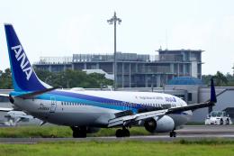 navipro787さんが、宮崎空港で撮影した全日空 737-881の航空フォト(写真)