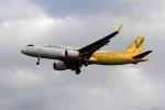 kuro2059さんが、那覇空港で撮影したバニラエア A320-214の航空フォト(写真)