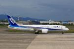 おみずさんが、松山空港で撮影した全日空 787-8 Dreamlinerの航空フォト(写真)