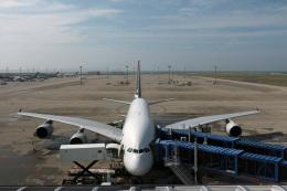Wasawasa-isaoさんが、中部国際空港で撮影したシンガポール航空 A380-841の航空フォト(飛行機 写真・画像)