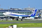 frappéさんが、福岡空港で撮影した全日空 737-881の航空フォト(写真)