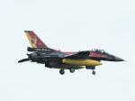 ジジさんが、築城基地で撮影した航空自衛隊 F-2Aの航空フォト(写真)