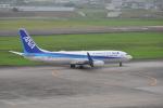 フレアー350さんが、仙台空港で撮影した全日空 737-881の航空フォト(写真)
