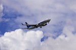mild lifeさんが、伊丹空港で撮影した全日空 737-881の航空フォト(写真)