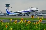 うらしまさんが、高松空港で撮影した全日空 A321-272Nの航空フォト(写真)