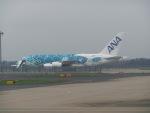 ヒロリンさんが、成田国際空港で撮影した全日空 A380-841の航空フォト(写真)