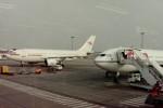 ヒロリンさんが、ベルリン・シェーネフェルト空港で撮影したインターフルーク A310-304の航空フォト(写真)