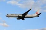 kuro2059さんが、那覇空港で撮影した日本トランスオーシャン航空 737-8Q3の航空フォト(写真)
