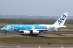 セブンさんが、新千歳空港で撮影した全日空 A380-841の航空フォト(飛行機 写真・画像)