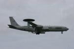 Mr.boneさんが、普天間飛行場で撮影したアメリカ空軍 E-3B Sentry (707-300)の航空フォト(写真)