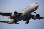 武彩航空公司(むさいえあ)さんが、羽田空港で撮影した日本航空 777-246/ERの航空フォト(写真)