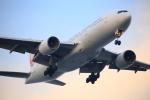 武彩航空公司(むさいえあ)さんが、羽田空港で撮影した日本航空 777-246の航空フォト(写真)