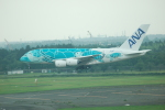 yanaさんが、成田国際空港で撮影した全日空 A380-841の航空フォト(写真)