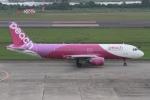rjジジィさんが、仙台空港で撮影したピーチ A320-214の航空フォト(写真)