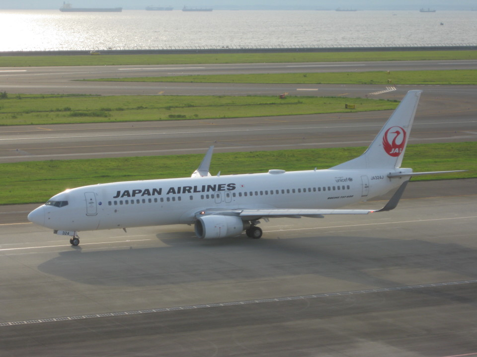 くまのんさんの日本航空 Boeing 737-800 (JA324J) 航空フォト