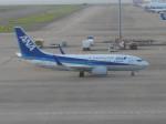 くまのんさんが、中部国際空港で撮影した全日空 737-781の航空フォト(飛行機 写真・画像)