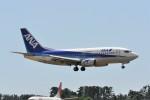 kumagorouさんが、仙台空港で撮影したエアーネクスト 737-5Y0の航空フォト(飛行機 写真・画像)