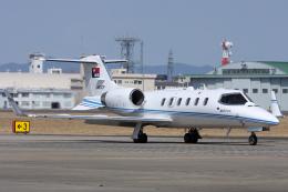Hariboさんが、名古屋飛行場で撮影した中日新聞社 31Aの航空フォト(飛行機 写真・画像)