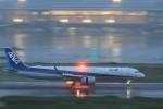 HNANA787さんが、羽田空港で撮影した全日空 A321-272Nの航空フォト(写真)