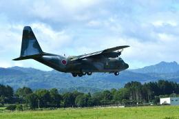 GOQさんが、八雲分屯基地で撮影した航空自衛隊 C-130H Herculesの航空フォト(飛行機 写真・画像)