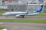 ゆう改めてさんが、福岡空港で撮影した全日空 737-881の航空フォト(写真)