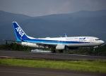 Tomo@RJFKさんが、鹿児島空港で撮影した全日空 737-8ALの航空フォト(写真)