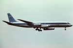 tassさんが、成田国際空港で撮影したエア・トランスポート・インターナショナル DC-8-62H(F)の航空フォト(写真)