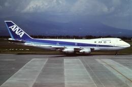 tassさんが、鹿児島空港で撮影した全日空 747SR-81の航空フォト(写真)