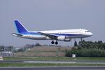 SKYLINEさんが、成田国際空港で撮影した全日空 A320-211の航空フォト(写真)