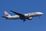 やつはしさんが、羽田空港で撮影した日本航空 777-246/ERの航空フォト(写真)