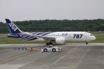 NH642さんが、熊本空港で撮影した全日空 787-8 Dreamlinerの航空フォト(写真)