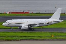 うちわさんが、羽田空港で撮影したコムラックス・マルタ A319-115X CJの航空フォト(飛行機 写真・画像)