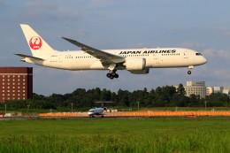 航空フォト:JA841J 日本航空 787-8 Dreamliner