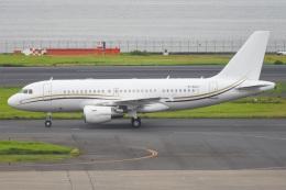 renseiさんが、羽田空港で撮影したコムラックス・マルタ A319-115X CJの航空フォト(飛行機 写真・画像)