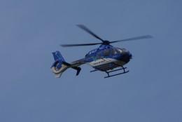 gomachanさんが、大館能代空港で撮影した東北エアサービス EC135P2+の航空フォト(飛行機 写真・画像)
