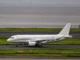 kikiさんが、羽田空港で撮影したコムラックス・マルタ A319-115X CJの航空フォト(飛行機 写真・画像)