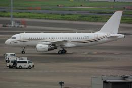 banshee02さんが、羽田空港で撮影したコムラックス・マルタ A319-115X CJの航空フォト(飛行機 写真・画像)
