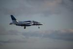 sasuke1208さんが、松島基地で撮影した航空自衛隊 T-4の航空フォト(写真)